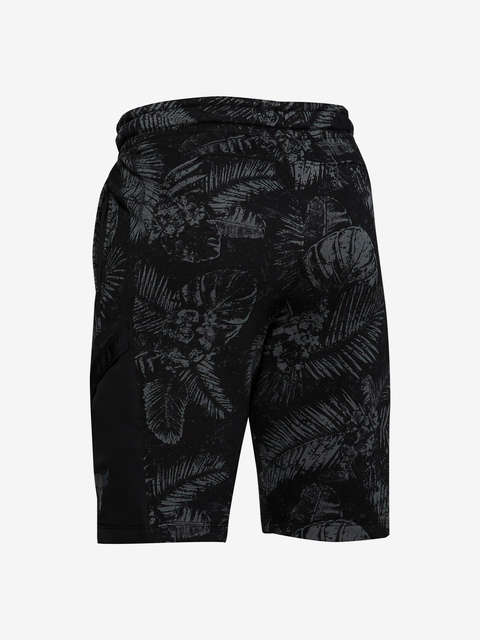 Kraťasy Under Armour Project Rock Terry Short